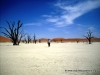 deadvlei_1