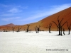 deadvlei_4